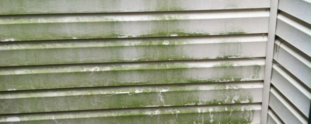 Greenville Pressure Washing & House Washing