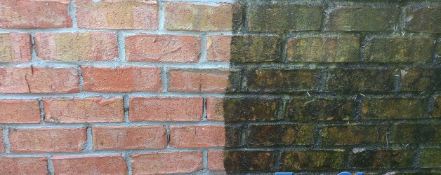 Brick Cleaning in Anderson, SC