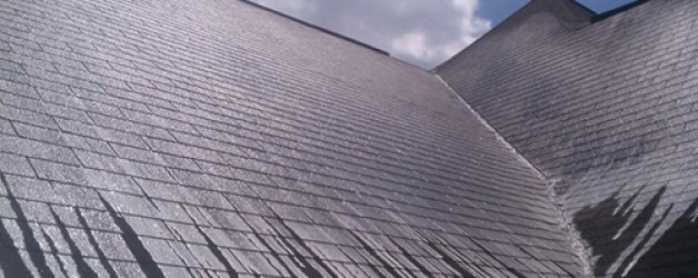 Greenville, SC Roof Cleaning